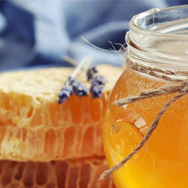 Μέλι & Προϊόντα μέλισσας